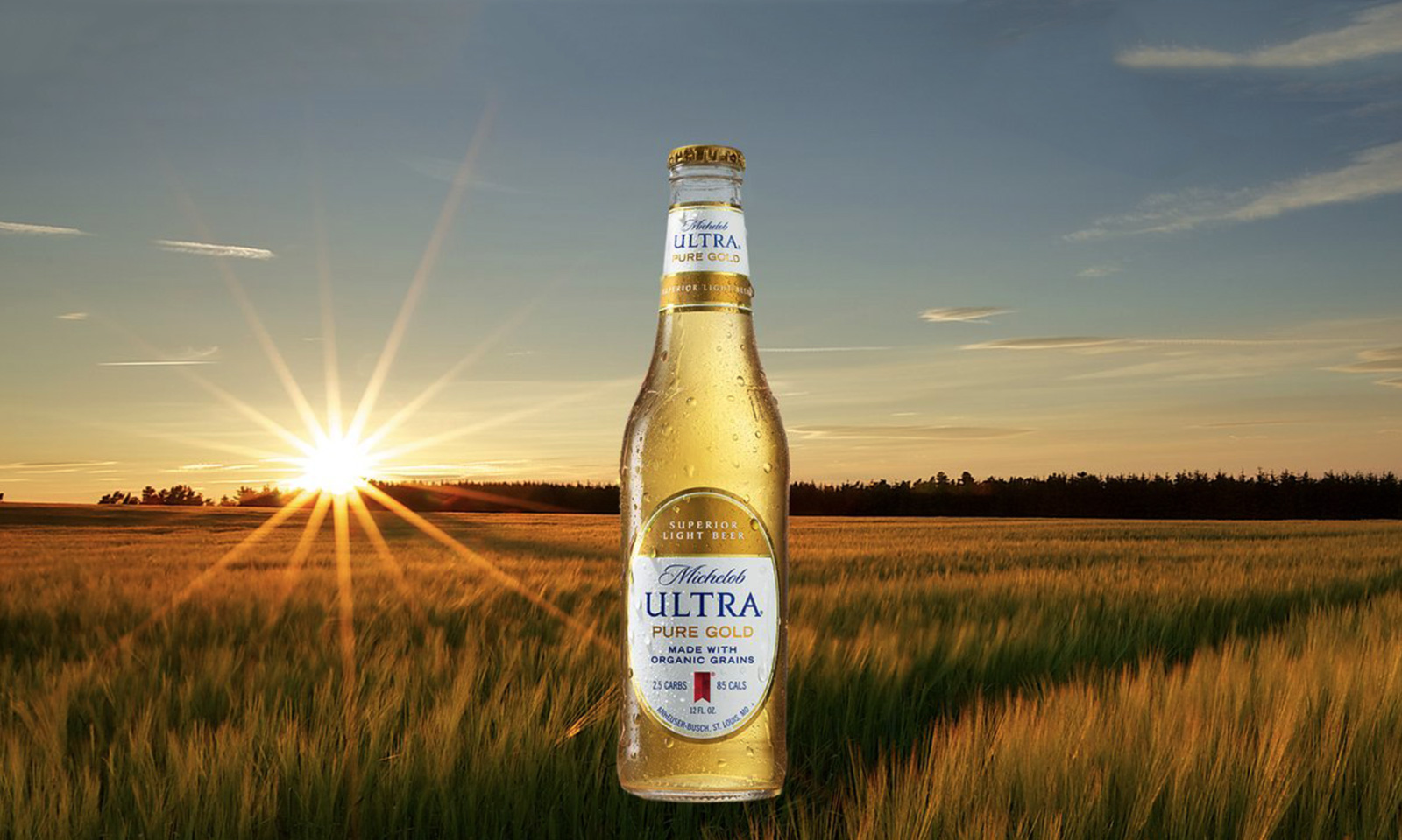 Michelob ULTRA Unveiled Its Newest Innovation U2014 Michelob ULTRA Pure Gold,  The First Superior Light Beer Made With Organic Grains And It Offers A  Pure, ...