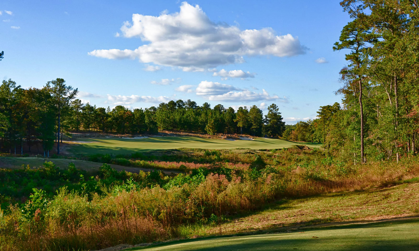 Golf-Courses-by-Coore & Crenshaw Dormie Club