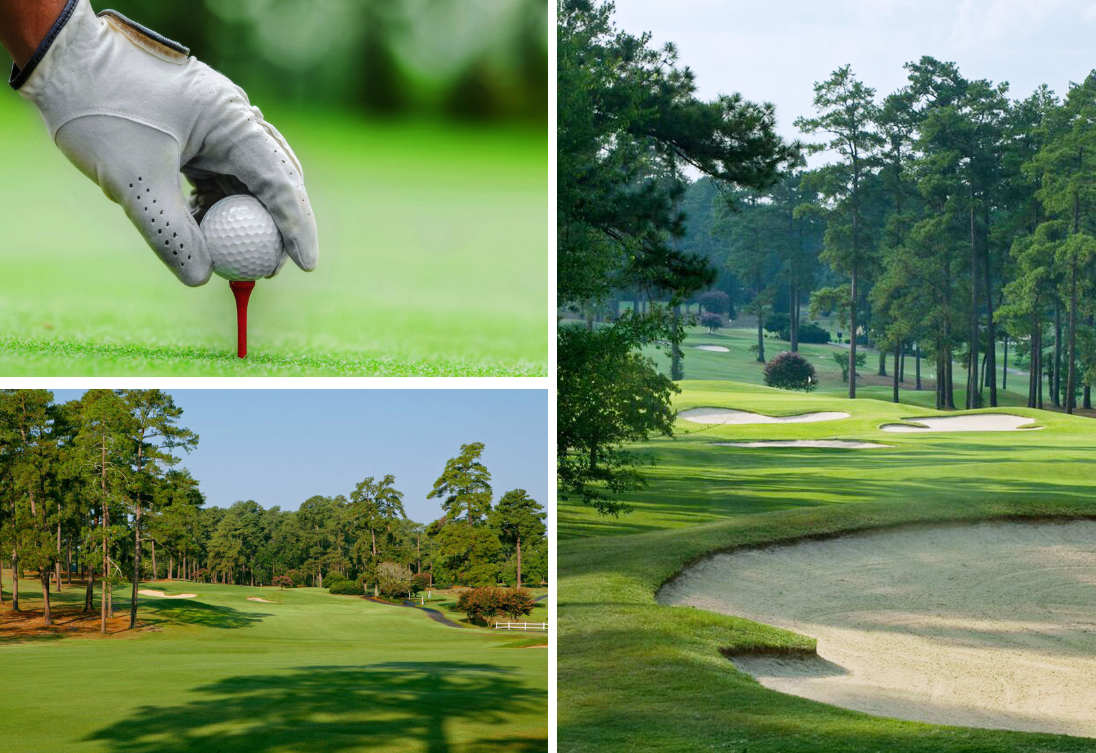 Play a round of golf at Forest Hills Golf Club or Gordon Lakes Golf Club