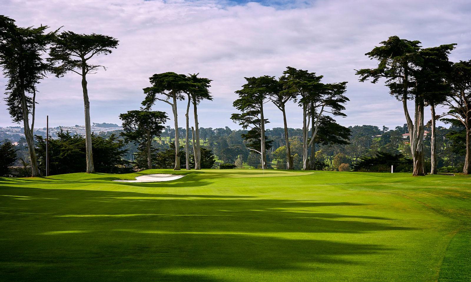 TPC Harding Park Golf Course