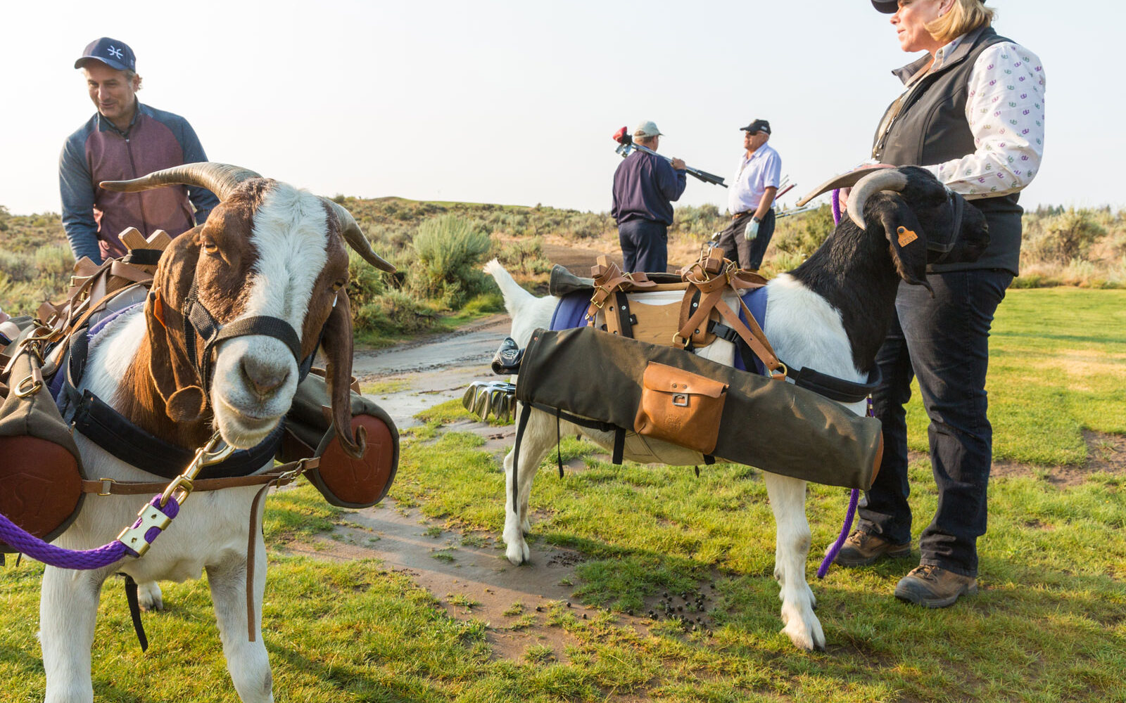 Silvies Valley Ranch is a Western Treat of a Retreat 4