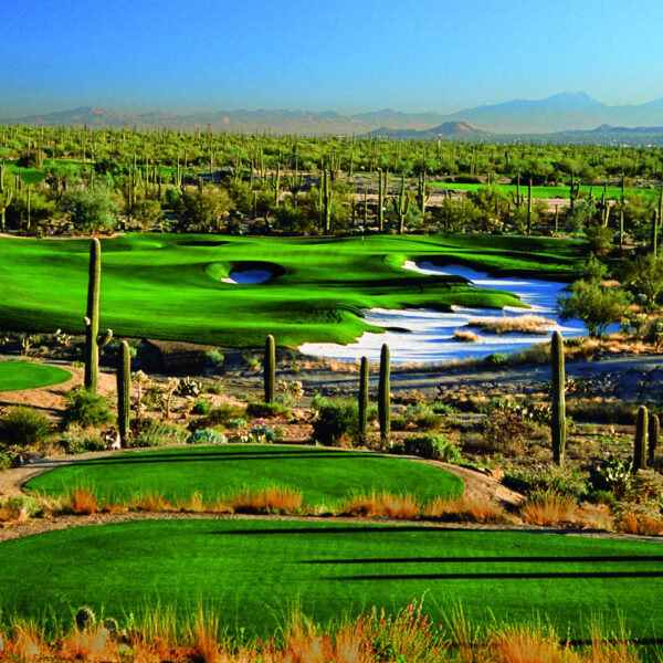 The Club at Dove Mountain 1